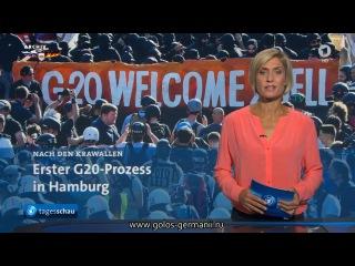 В Германии судят участников  демонстрации против саммита G20  Голос Германии