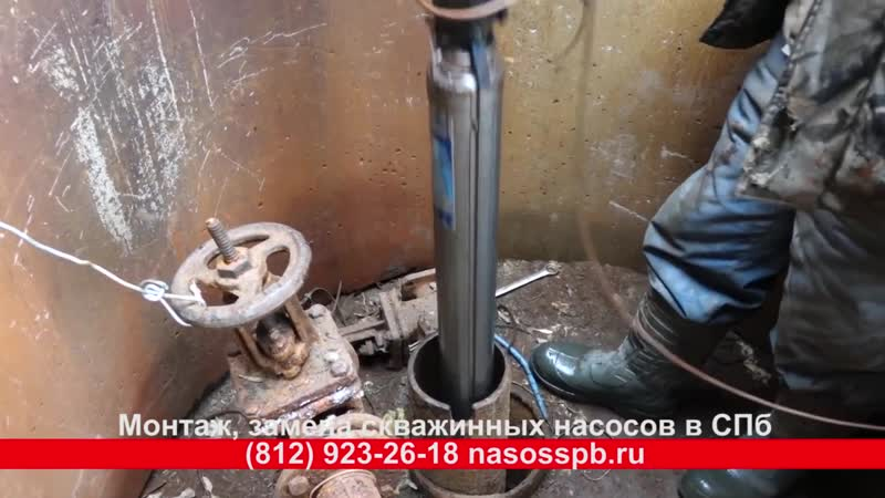 Как достать насос из артезианской скважины в СПб насос для СНТ Pedrollo 4SR8 31 PD