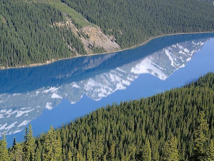 Озеро Пейто в Скалистых горах, изображение №2