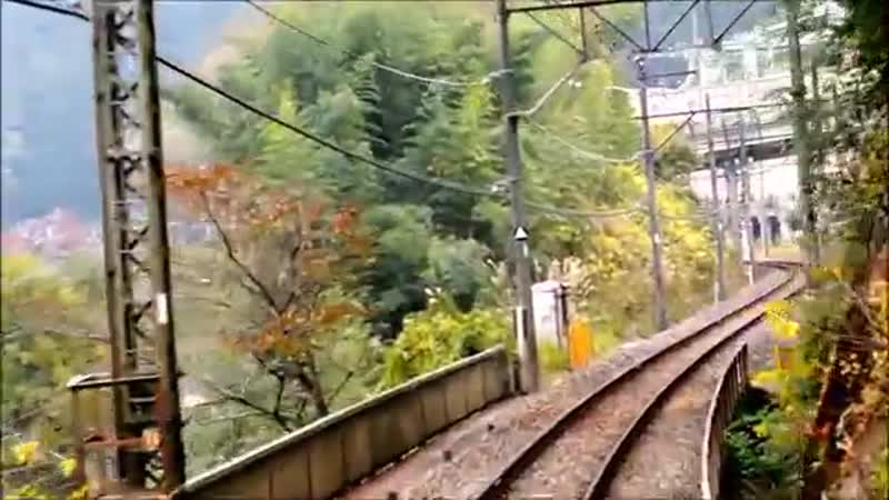 Seibu Chichibu Ikebukuro Line drivers view