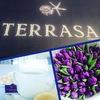 Отель и СПА Темиринда, ресторан Терраса