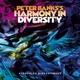 Peter Banks - Swing It