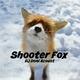 DJ Doni Acoust - Shooter Fox
