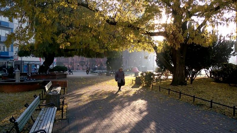 Осень в Гожуве, Польша.