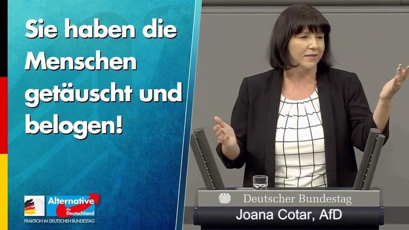 Uploadfilter Sie haben die Menschen getäuscht und belogen Joana Cotar AfD Fraktion