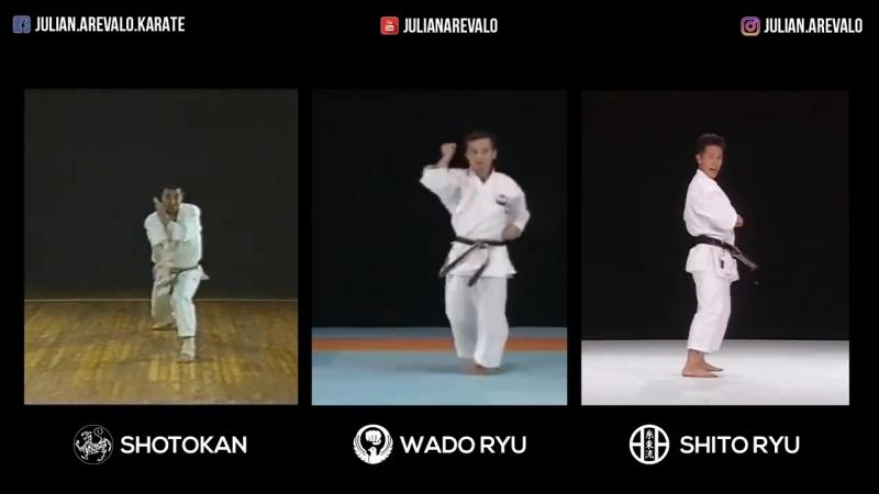 Bassai Dai - Shotokan Wado Ryu Shito Ryu