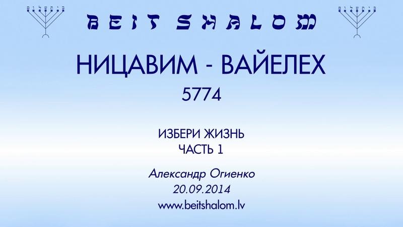 НИЦАВИМ ВАЙЕЛЕХ 5774 ИЗБЕРИ ЖИЗНЬ ЧАСТЬ 1 А Огиенко 20 09 2014