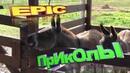 Приколы с животными с озвучкой Приколы до слёз ржач ViDeO Приколы про кошек УгАр