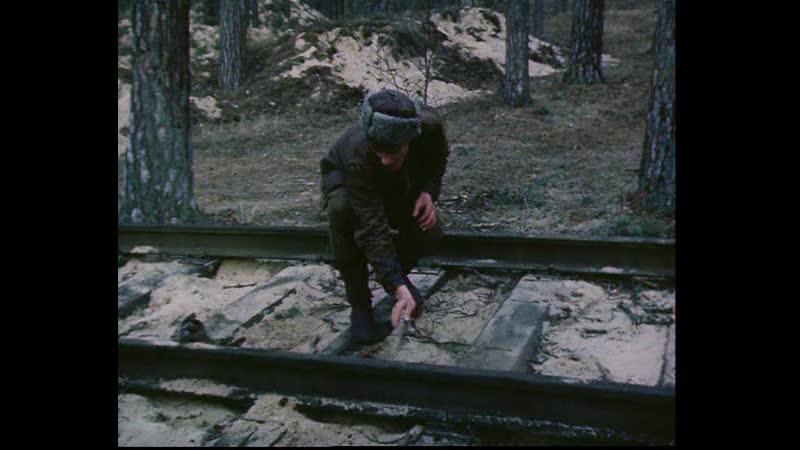 В лесах под Ковелем 1984 часть 1