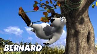 Bernard Bear | Cayendo del columpio y mas | Dibujos animados para niños | WildBrain
