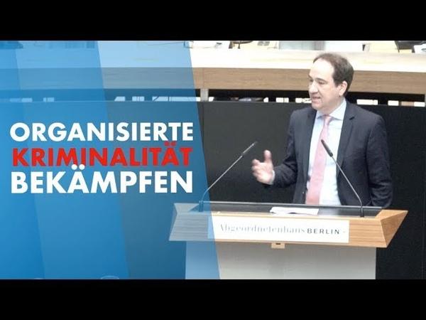 Organisierte Kriminalität bekämpfen Bachmann AfD