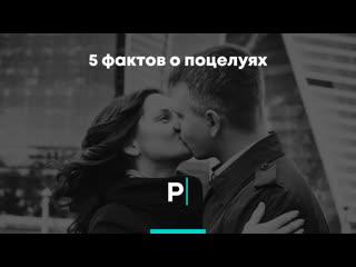 5 фактов о поцелуях