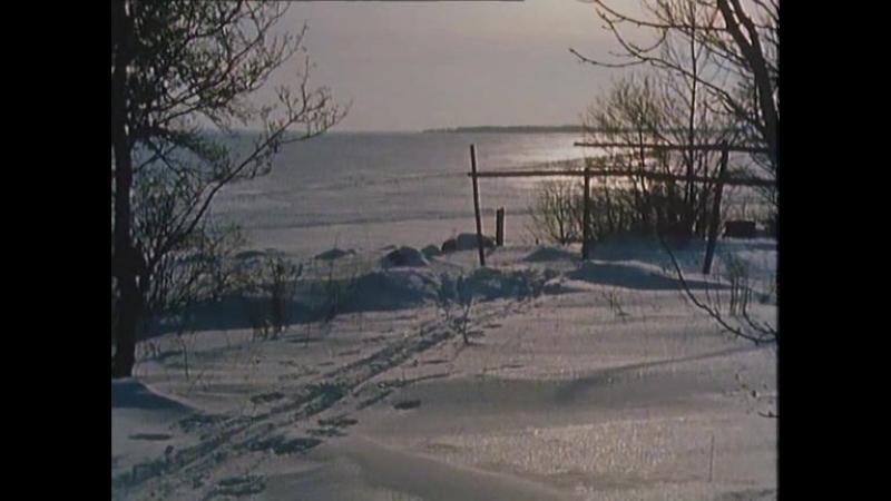 На острове Сальткрока 11 серия