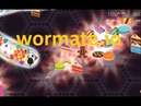 Wormate.io 108   Trò chơi rắn săn mồi   Game rắn săn mồi
