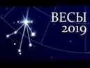 Весы Таро гороскоп на 2019 год Расклад знак зодиака