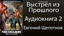 Евгений Щепетнов - Чистильщик. Выстрел из Прошлого. (2 книга из 2). Аудиокнига