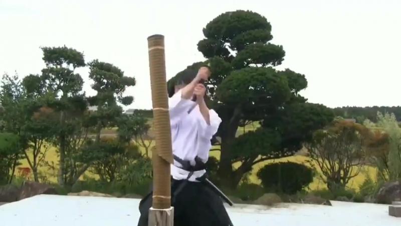 Tenshin-ryu Hyoho-Tameshigiri 試 切