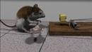 Blender 3D short animation Cheese
