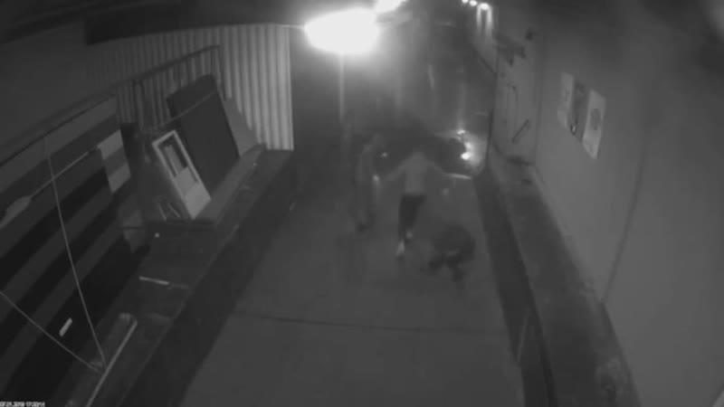 Anschlag auf Magnitz Polizei veröffentlicht Video und lobt Belohnung aus