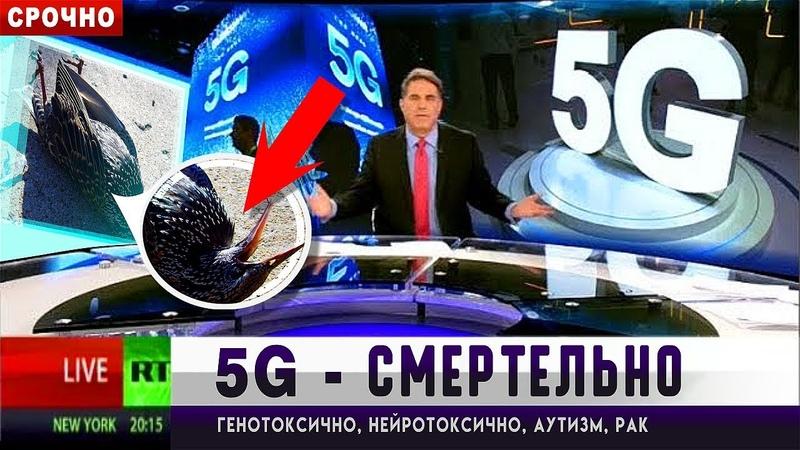 5G - СМЕРТЕЛЬНО ОПАСНА⚠️В России этого не скажут! Конгресс США против сети 5G