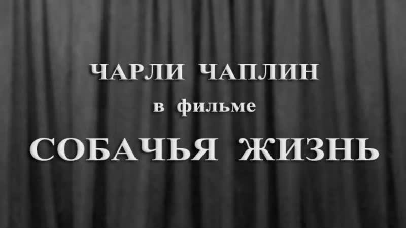 1918 - Собачья жизнь (A Dogs Life)