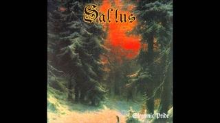Saltus - Słowiańska Duma / Slavonic Pride (Full Album)