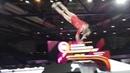 Gymnastics Worlds 2019 Maria Paseka RUS Vault Podium Training