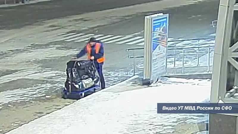 Транспортные полицейские раскрыли кражу чемодана на привокзальной площади аэропорта Толмачёво Май 2020