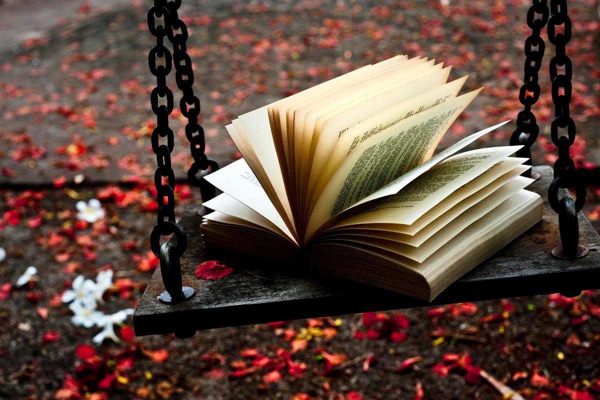 Фото книги с картинками