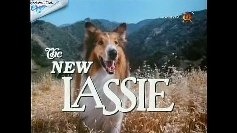 Новые приключения Лесси(1989–1991) серии 19-24