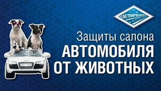 Накидка на сиденье автомобиля для защиты от животных. Автогамак для перевозки собак в автомобиле.