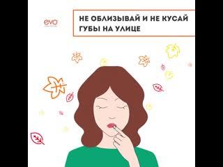 Как избежать обветривания губ