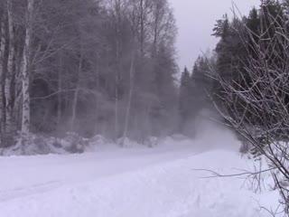 Yaris WRC едет в магазин 2 января.