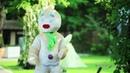 Самая весёлая Свадьба в стиле Шрек | видео Сергей Савинский
