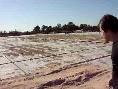 Investigating femas mass graves in houston texas