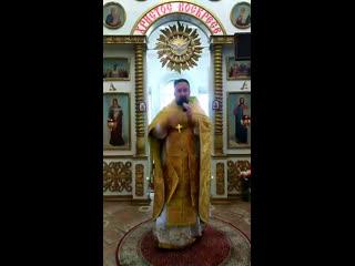 г. проповедиь иерея Дмитрия Боголюбова.  Святителя Михаила, первого митрополита Киевского