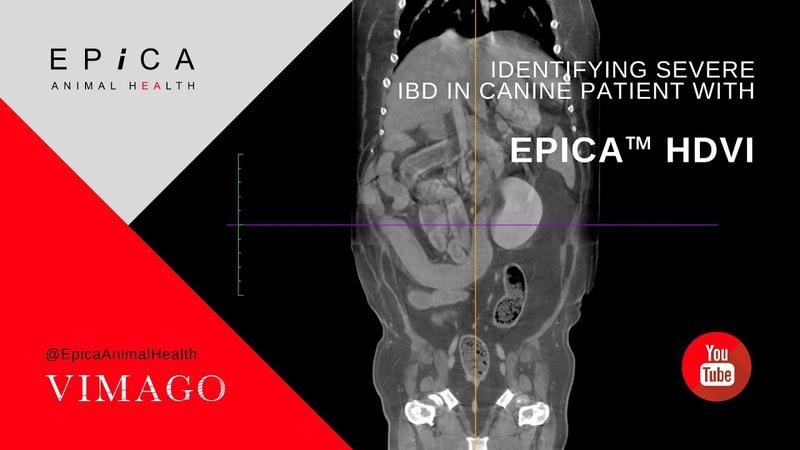 Обнаружение тяжёлого воспалительного заболевания кишечника у собаки с помощью КТ Identifying Severe IBD in Canine Patient with Epica™ HDVI