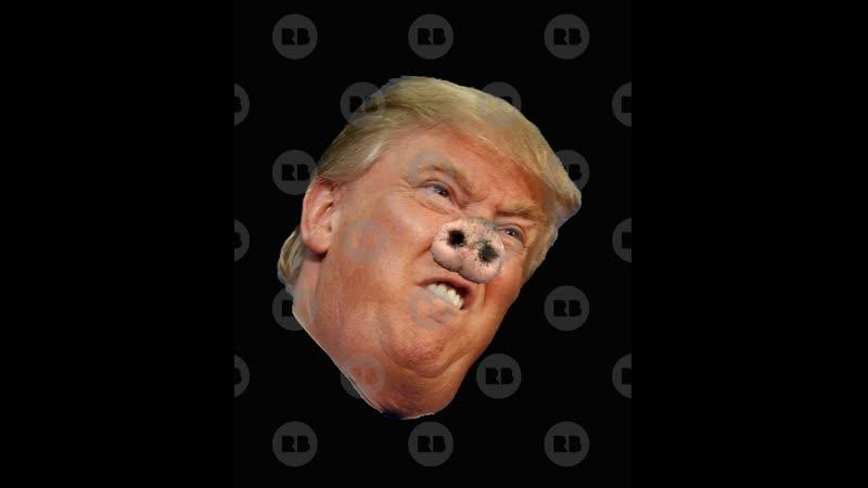 Trump und die Corona Kriese der größte Idiot und Dummkopf und Lügner den die Welt je gesehen hat