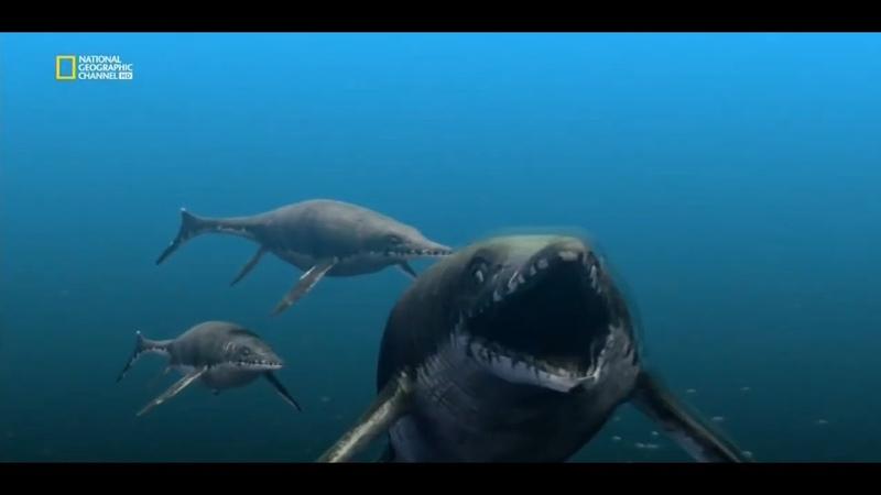 С точки зрения науки Морские чудовища древности Документальный фильм National Geographic HD
