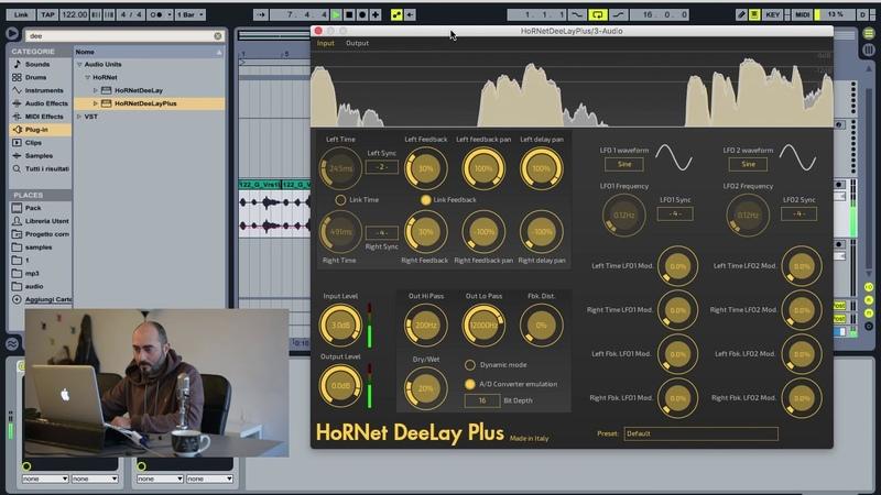 HoRNet DeeLay Plus dynamic delay