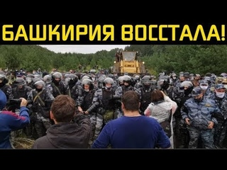 """Обращение авторов канала """"Правда Зимина"""" в поддержку защитников Куштау."""