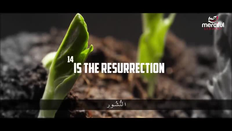 THE KINGDOM OF ALLAH AL MULK EMOTIONAL QURAN RECITATION via