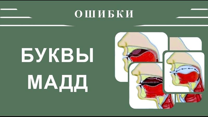 Айман Сувейд 1 Ошибки в буквах БУКВЫ МАДД с субтитрами на русском