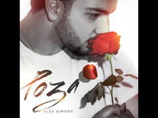 Alex simons роза