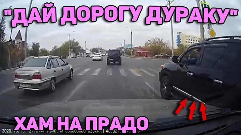 Автоподборка Дай Дорогу Дураку 🚓Автохам на Прадо 181