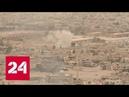 NYT: Исламское государство рекрутировало 18 тысяч боевиков - Россия 24