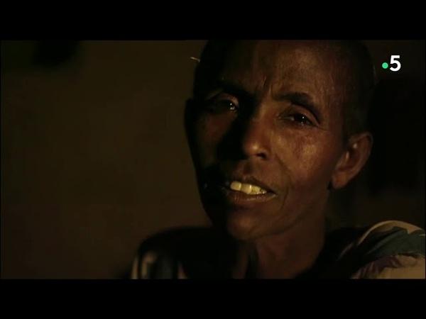 Судьба пчел и людей в Эфиопии, Аргентине и на Корсике (фильм Мед и люди, часть 4)