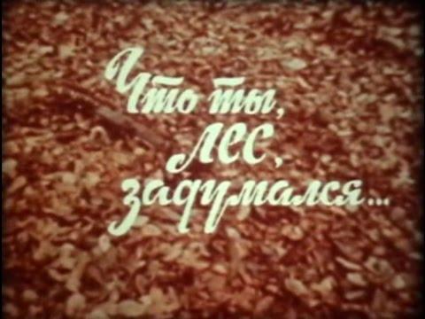 Что ты лес задумался 1985г Молдавия Док фильм СССР