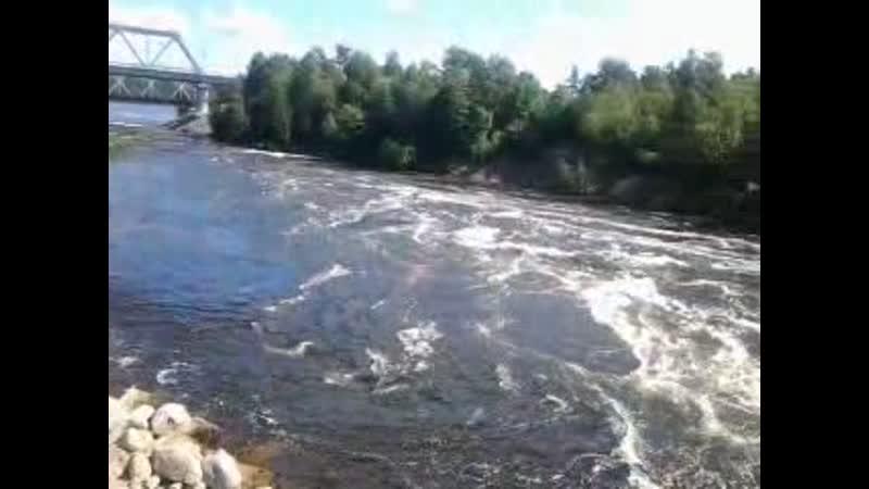 Video-2016-07-11-11-50-35