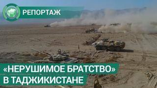 Первый этап совместного учения стран ОДКБ Нерушимое братство  2019 завершился в Таджикистане